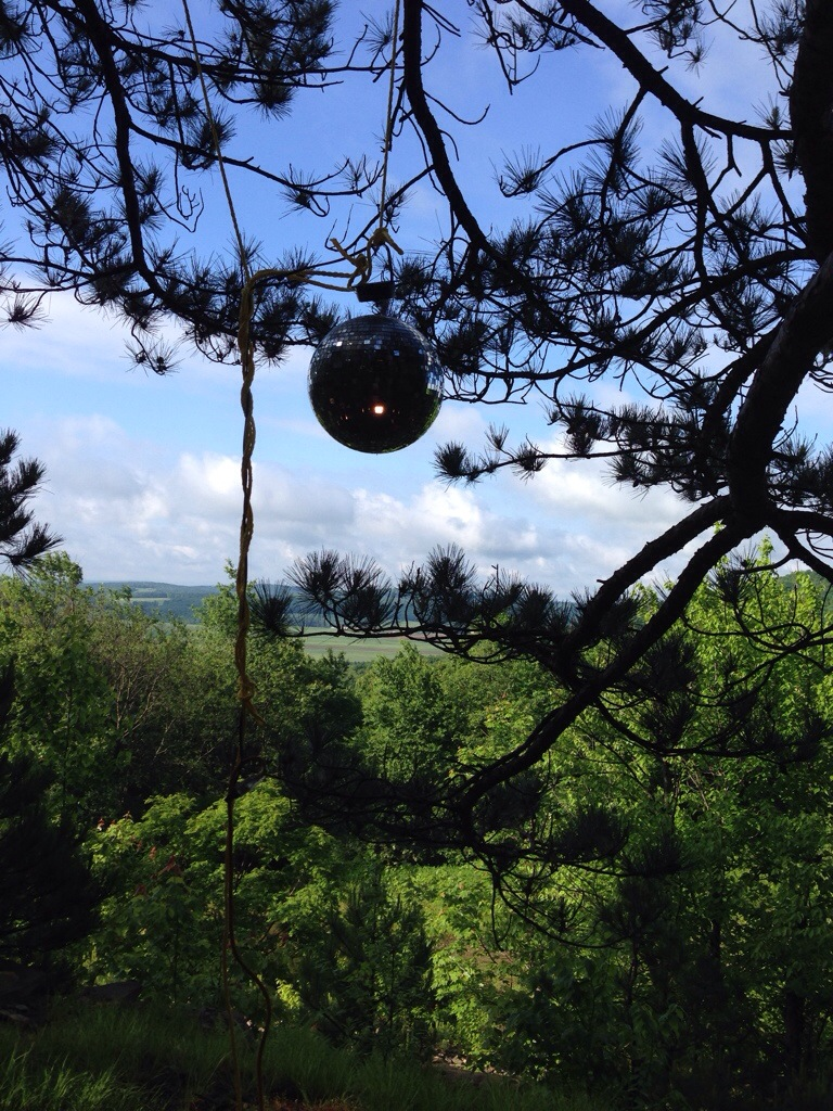 disco ball in the woods