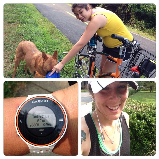 Had buddy and remy w me for 10 of my 16 miles. Grateful for company.